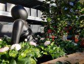 Vacature – Bloemist, tuinplanten verkoper en magazijnmedewerker