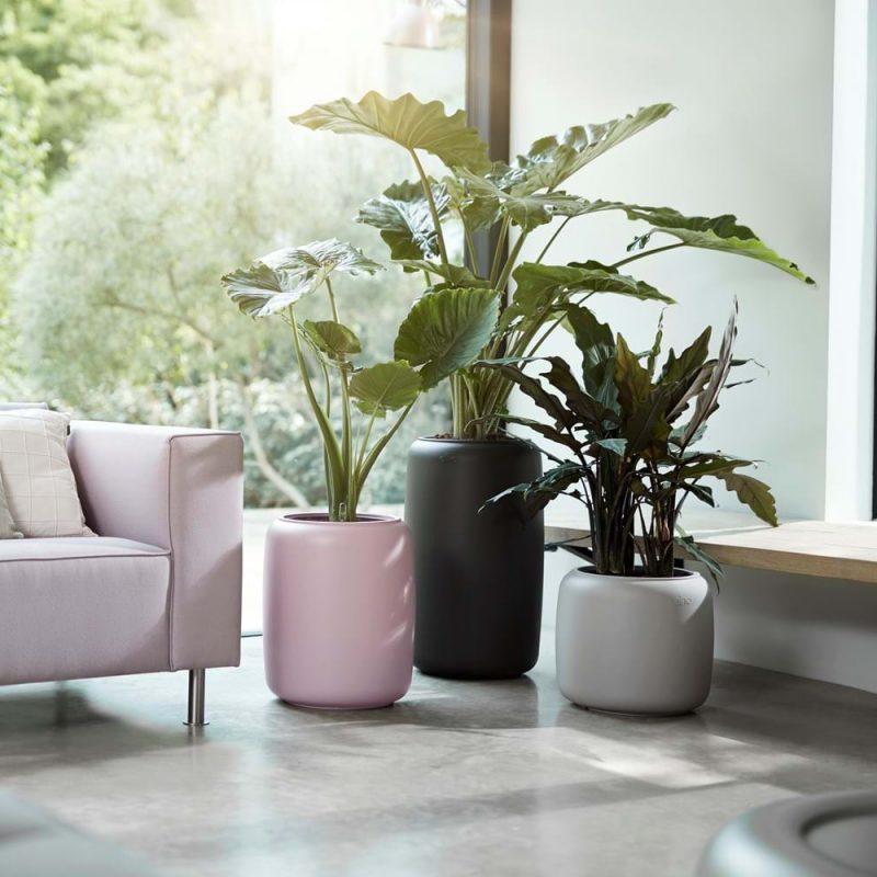 Bloempotten, plantenbakken en groene inspiratie