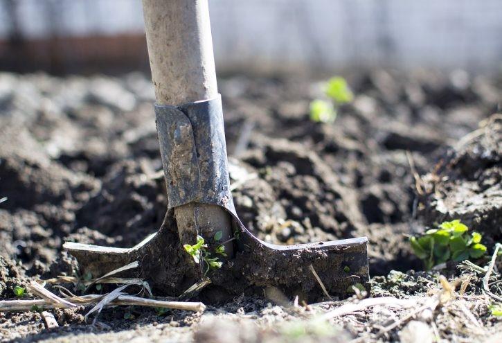 Alles voor tuin en huis
