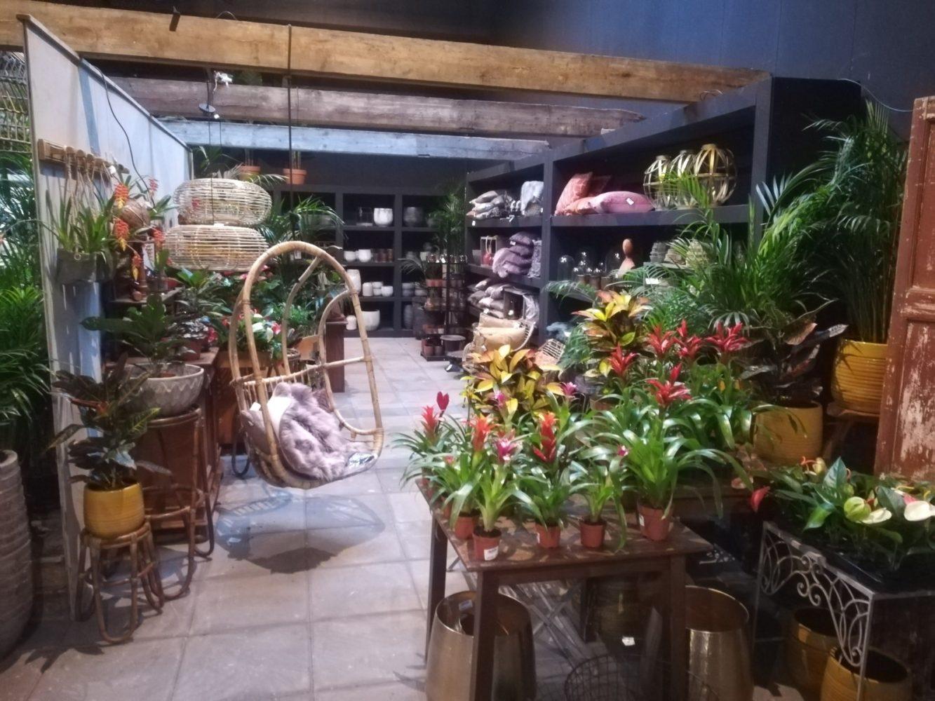 Alles voor huis & tuin