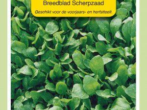 OBZ Spinazie Breedblad Scherpzaad, 50g