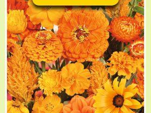 OBZ Zomerbloemen mengsel, oranje