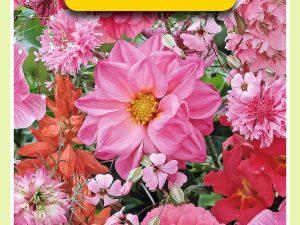 OBZ Zomerbloemen mengsel, roze/rood