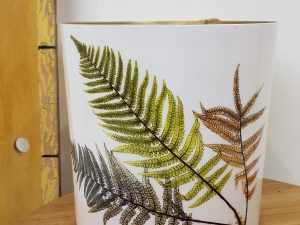 Delta pot decor fern