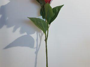 Hibiscus l65cm zalm