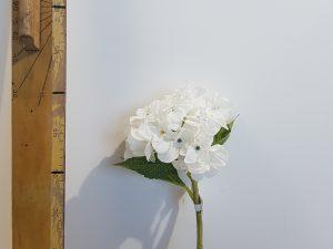 Hortensia l35cm wit