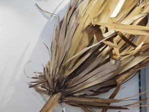 Palm leaf giant 150-175cmNatural