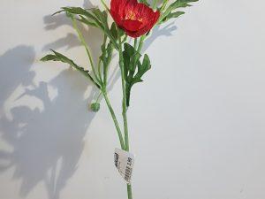 Papaver l56cm rood