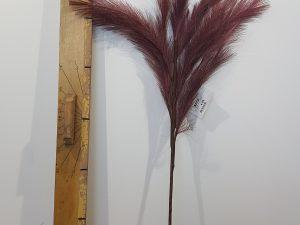 Stem Panicle Grass L72.0Creme