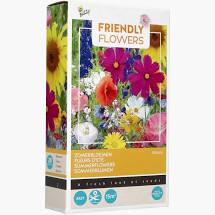 Buzzy® Friendly Flowers Zomerbloemen 15m² (16)